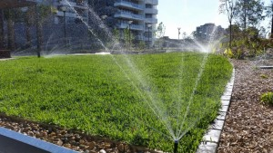 Commercial_Rooftop irrigation system Sydney (Small)