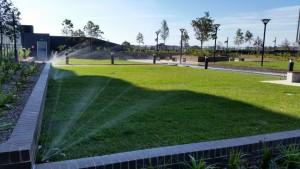 Eastern Suburbs sprinkler system installation (Small)